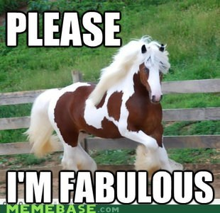 color,fabulous,horse,Memes,please
