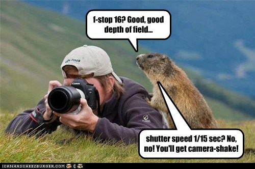 advice annoying camera depth of field gopher photographers prarie dog - 6350660352