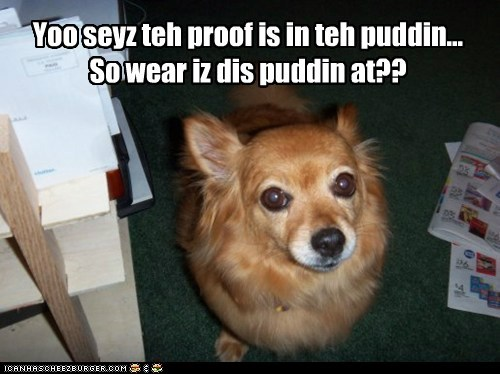 chihuahua,dogs,noms,proof is in the pudding,pudding