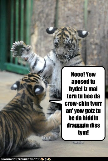 arguing,crouching tiger hidden dr,crouching tiger hidden dragon,game,hide and seek,tiger cub,whining,youre-doing-it-wrong