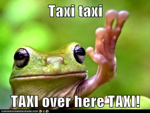 cab frog hailing ignoring raised hand stop taxi - 6351590144