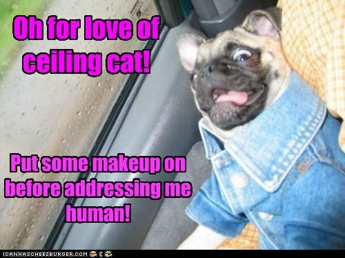 Put some makeup on before addressing me human! Oh for love of ceiling cat!