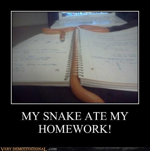 hilarious homework snake wtf - 6351995136