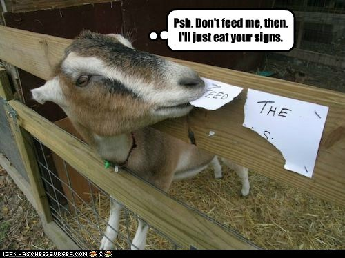 dont-feed-the-animals,eating,food,goat,revenge,signs