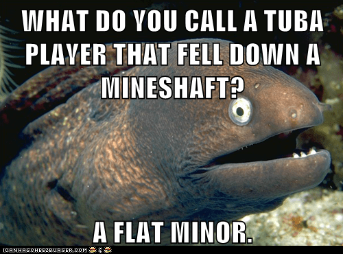 Bad Joke Eel,bad jokes,eels,flat,Memes,miners,mineshaft,puns
