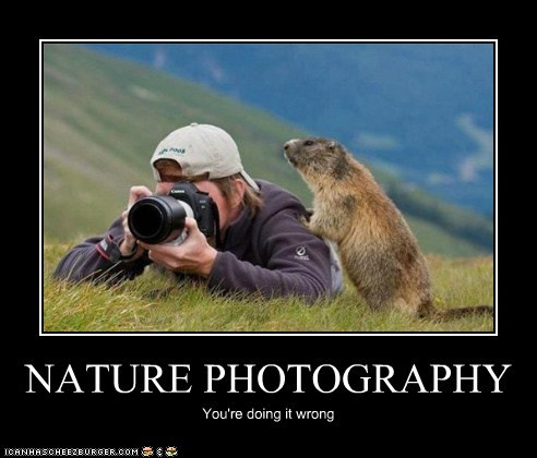 NATURE PHOTOGRAPHY You're doing it wrong