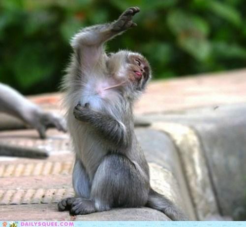 monkey theater shakespear hamlet dramatic - 6352685568