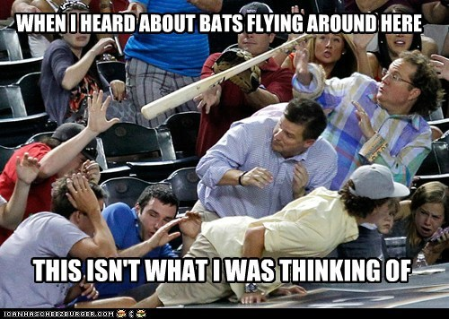 baseball bats political pictures