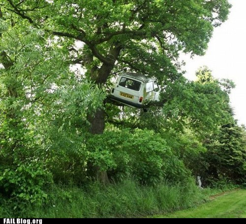 car,driving,stuck,tree