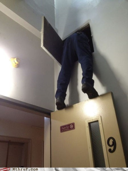 electrician,step ladder