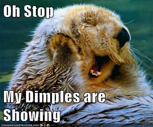 captions,dimples,flattered,laughing,oh stop it you,oh you,otter,otters,smiling