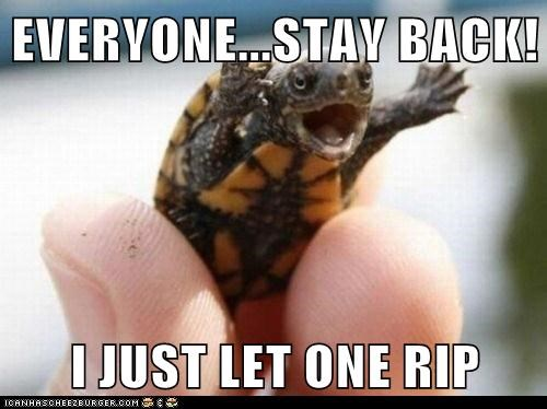 baby captions fart holding rip stand back turtle warning