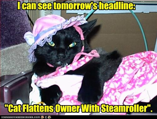 dress,headline,kill,lolcat,murder,newspaper,revenge,steamroller