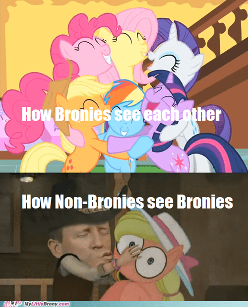 Bronies love and tolerate non bronies non-bronies the internet the internets - 6354306304