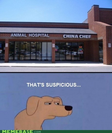 animals,chef,chinese food,dogs,Memes,suspicious