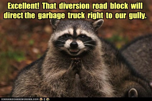diversion,eating,evil,food,garbage truck,plan,plotting,raccoon,road block