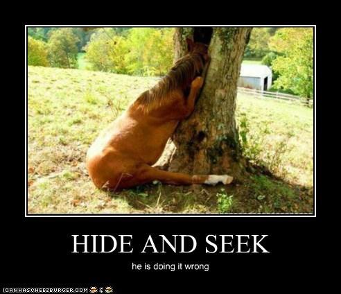 HIDE AND SEEK he is doing it wrong