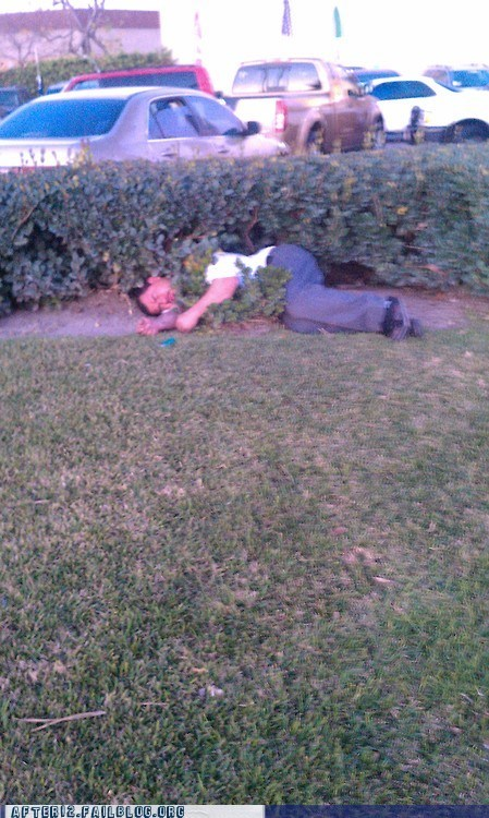 blackout,bushes,camouflage,hiding,incognito,passed out