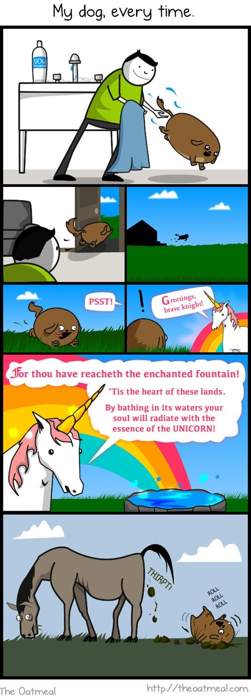 dogs horses imagination messy poop rainbows rolling in it the oatmeal unicorns - 6356337152