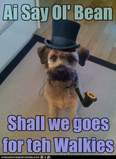 British,captions,dogs,fancy,sir,pipe,top hat,top hats,walk,walkies,what breed