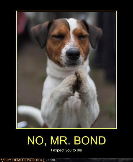 cute dogs hands james bond paws Pure Awesome