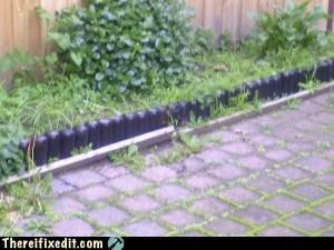 beer beer can gardening - 6358087936