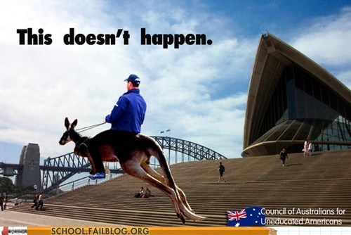 australia kangaroo save a horse this-doesnt-happen uneducated americans - 6358288384