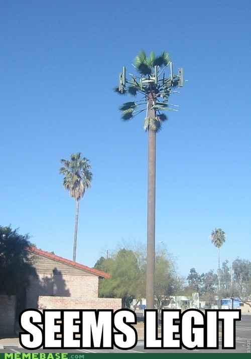 cell tower,real,seems legit,trees