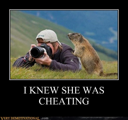 beaver,camera,cheating,Pure Awesome,spying,wtf