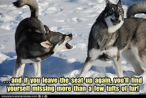 anger,l fight,threat,toilet-seat-couple,wolves,yelling
