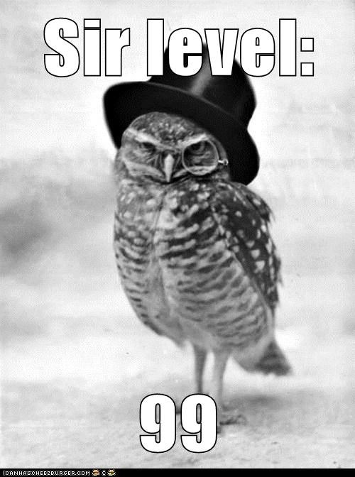 doing it right Owl quite sir