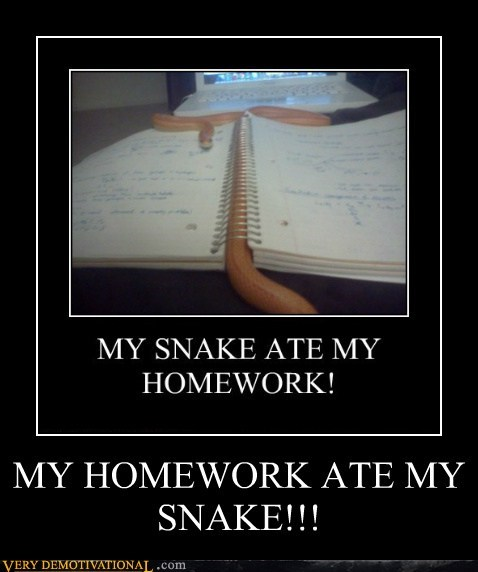 bizarre,homework,Pure Awesome,snake,wtf