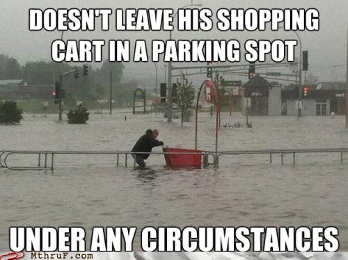 cart good guy shopper hurricane