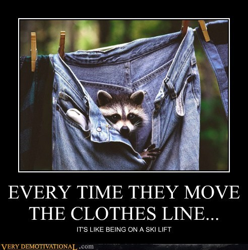 hilarious jeans pants racoon ski lift - 6360142848