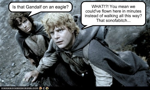 Is that Gandalf on an eagle? WHAT!?! You mean we could've flown here in minutes instead of walking all this way? That sonofabitch...