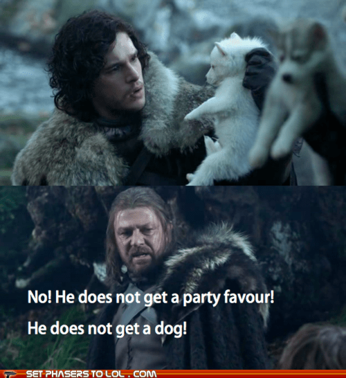 a song of ice and fire,bridesmaids,direwolf,dogs,Eddard Stark,Game of Thrones,ghost,Jon Snow,kit harington,party favor,sean bean