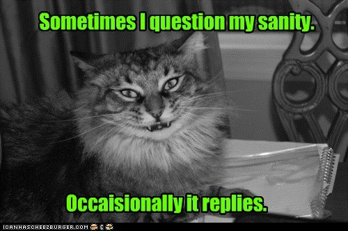 best of the week captions Cats crazy creepy insane lolcats sane sanity smile smiling wtf - 6360639744