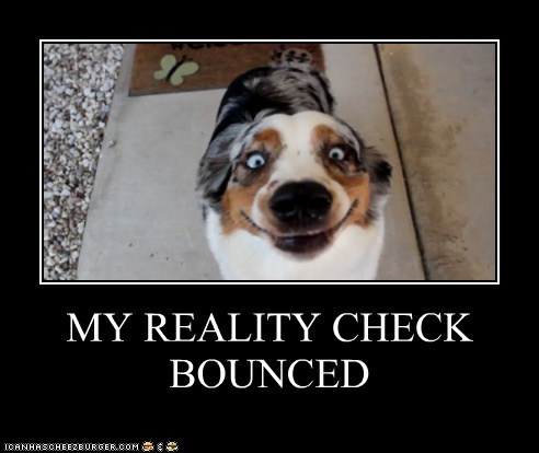 australian shepherd best of the week crazy demotivational dogs Hall of Fame Reality Check - 6360666112