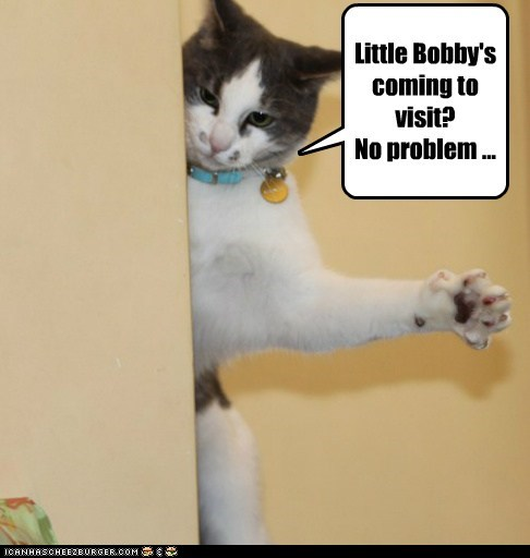 Little Bobby's coming to visit? No problem ...