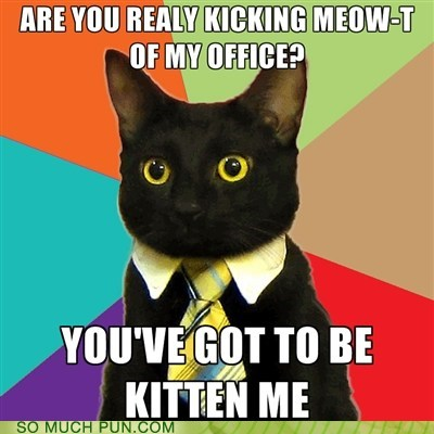 Business Cat Hall of Fame kidding kitten letter me meme meow out similar sounding t