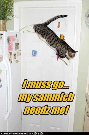 food,fridge,i must go,jump,my people,noms,sandwich