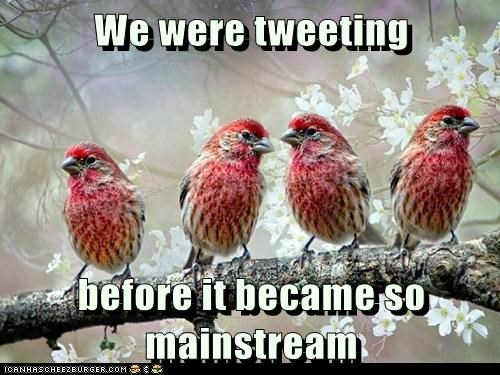 before it was cool birds hipsters mainstream tweeting twitter - 6363848960