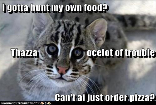 I gotta hunt my own food? Thazza ocelot of trouble Can't ai just order pizza?