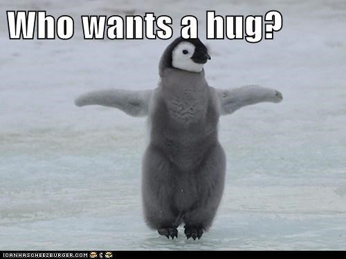 arms out baby best of the week cute Hall of Fame hug offering penguin