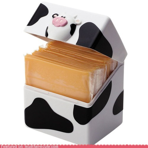 box cheese container cow - 6364715776