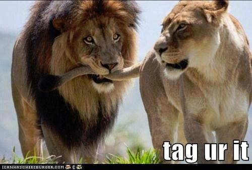 annoying biting game lions tag tail unimpressed
