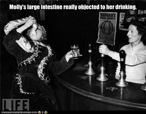 bar,drink,scary,snake,woman