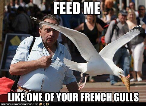 FEED ME LIKE ONE OF YOUR FRENCH GULLS