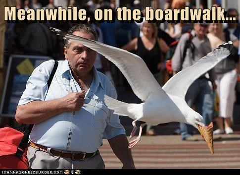 Meanwhile, on the boardwalk...