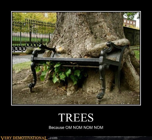 bench,eating,hilarious,noms,trees